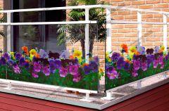 Film à fleurs transparentes de Pensées  FLP 193 . Luminis-Films
