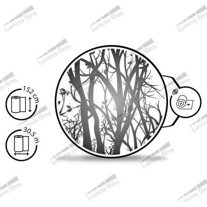 Film décoratif dépoli à arbres