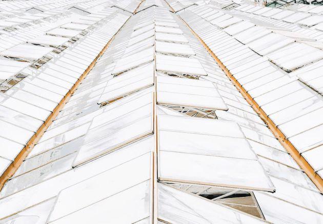Laque solaire blanc mat (5l). Luminis Films
