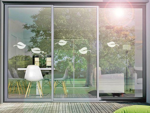 Stickers pour vitre motif feuilles. Luminis Films