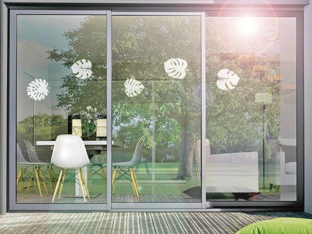 Stickers pour vitre motif feuilles tropicales. Luminis Films
