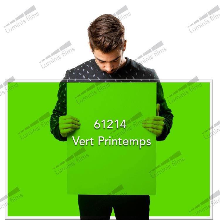 Film décoratif de couleur vert printemps - 61214. Luminis-Films