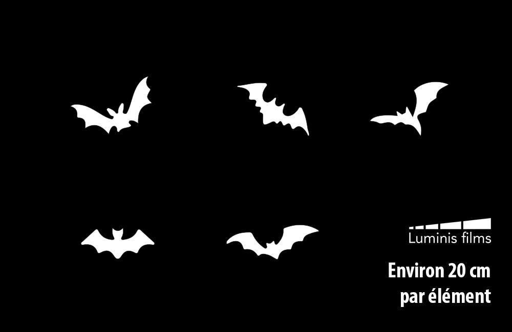 Stickers chauve souris halloween pour vitre. Luminis-Films